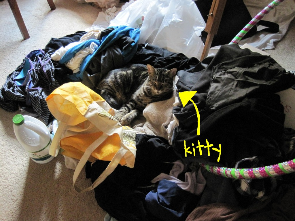 Tanks for leavin out da cleen clothes, mama, so I can be adorables jest for you. I luvs you.
