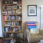 The desk is in storage, but here is the bookshelf (and dog).